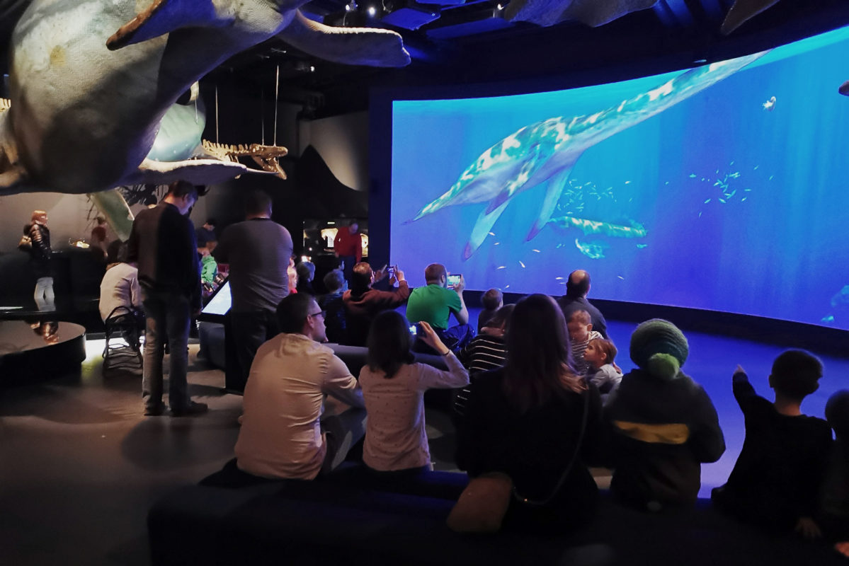 Visitors watching swimming saurians on the screen